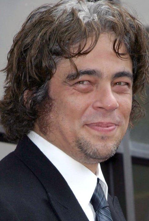 Бенисио Дель Торо